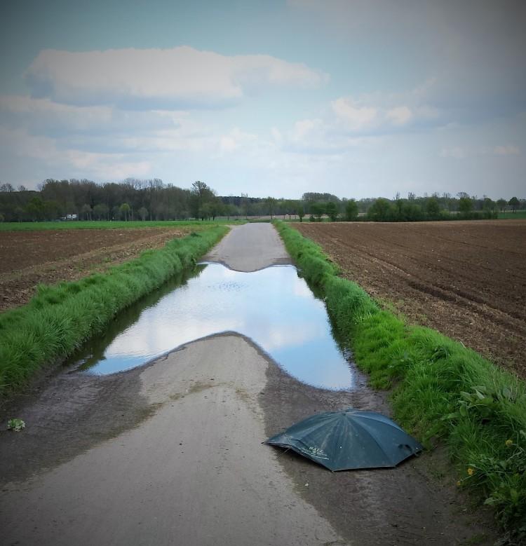 Pfütze Schirm