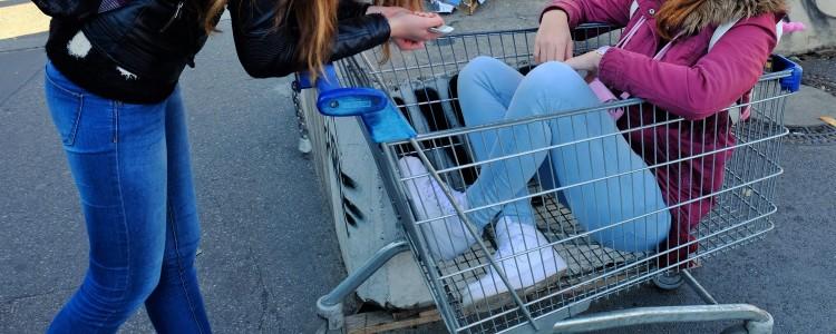 im Einkaufswagen