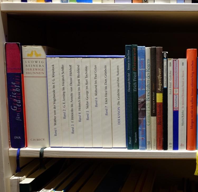 Regal Bücher