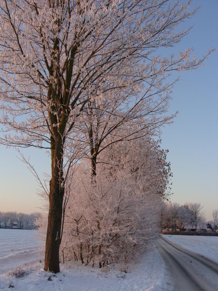 Schnee Weg