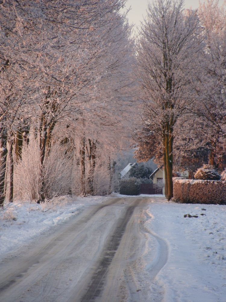 Weg Schnee