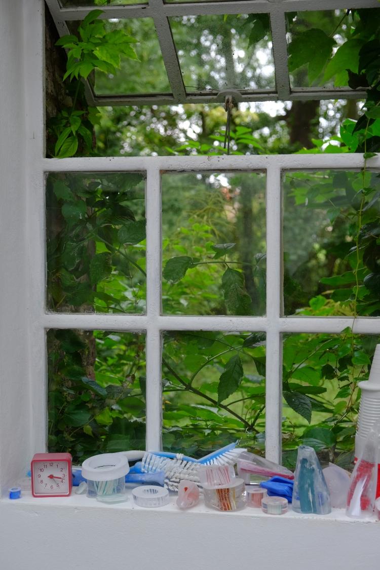 Fenster auf