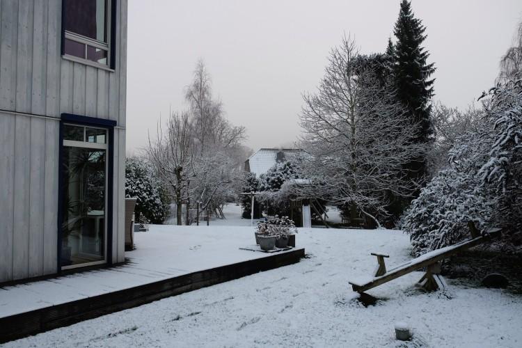 garten-im-schnee