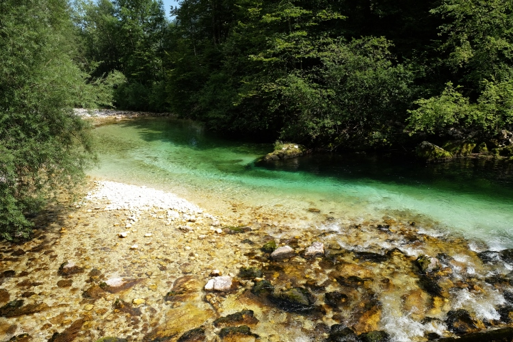 Fluss