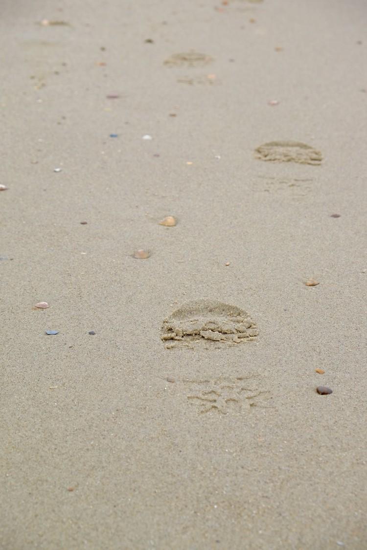 Spur Sand Domburg