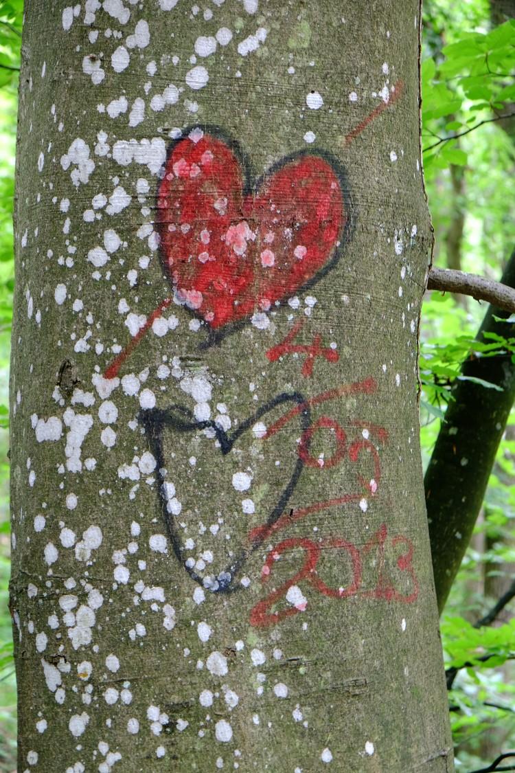 Herz Baum R
