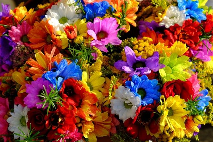 Blumen K