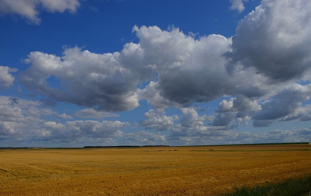 Landschaft Feld & Wolken