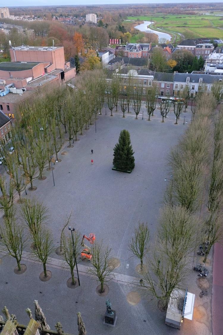 Platz Tannenbaum