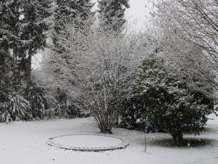 Garten Schnee