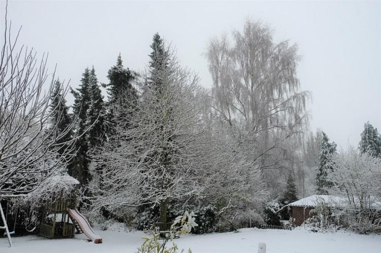 Schnee Dez