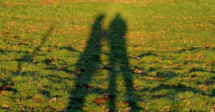 Schatten 2