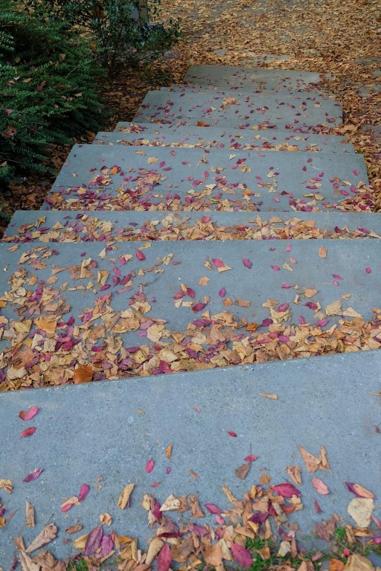 Treppe Herbst