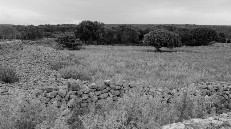 Landschaft O sw