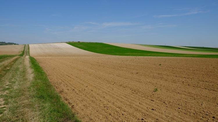 Felder Hügel